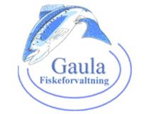 Innrapportering av fangst